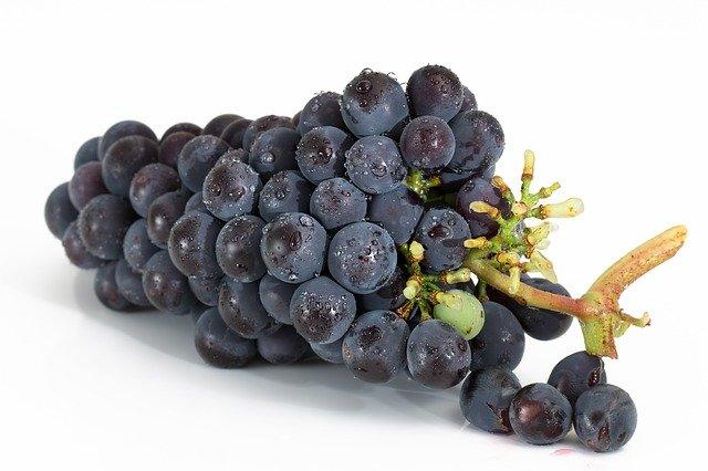 ペニス増大サプリでも重要なテストステロンを活性化する赤ブドウの食べ方